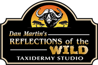 Reflections Taxidermy Logo